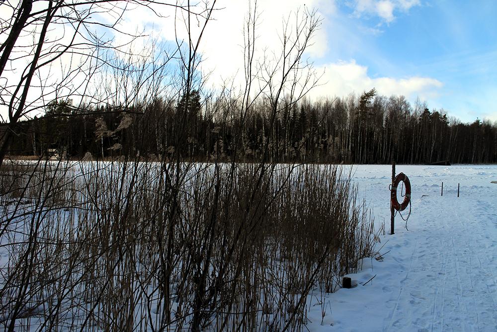 Niihamajärvi Tampere