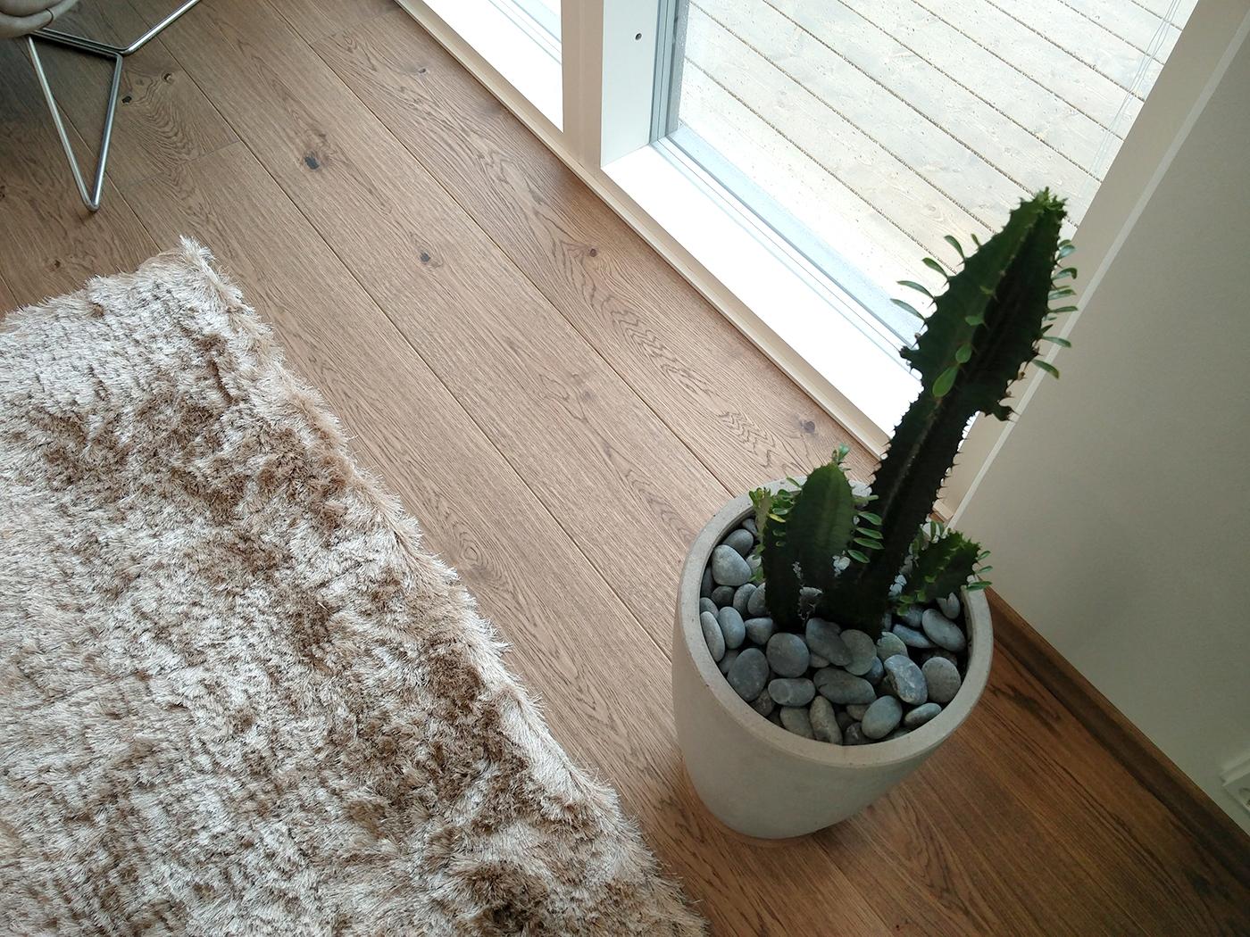 kaktus_syksy_sisustaminen_lkv_vaisto_luoman_puutarha_trinity